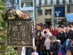 Fascination autour de chats sur Ginza St