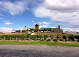 Wither Hills Winery