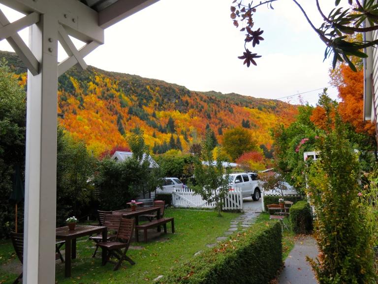 Terrasse avec vue sur la forêt