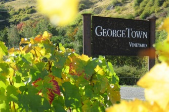 George Town Vineyard