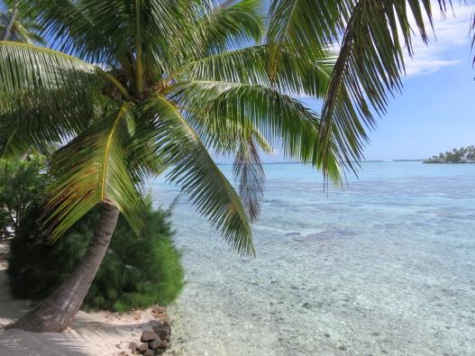Plage privée du bungalow plage