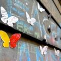 Papillons belges