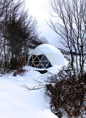 Wild Dome Gourette